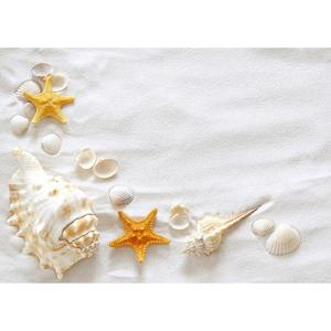 Image 2 - Beach Sand Starfish Shell Conch Photography Backgrounds Vinyl Cloth Backdrop Photo Studio for Children Baby Shower Photophone