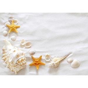 Image 2 - Beach Sand Starfish Shell Conch Photography sfondi vinile panno sfondo Studio fotografico per bambini Baby Shower fotofono