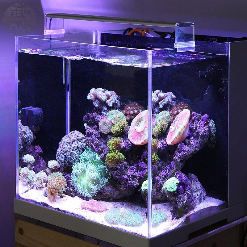 Chihiros marinha luz led coral sps lps aquário tanque de recife de mar branco azul chihiros