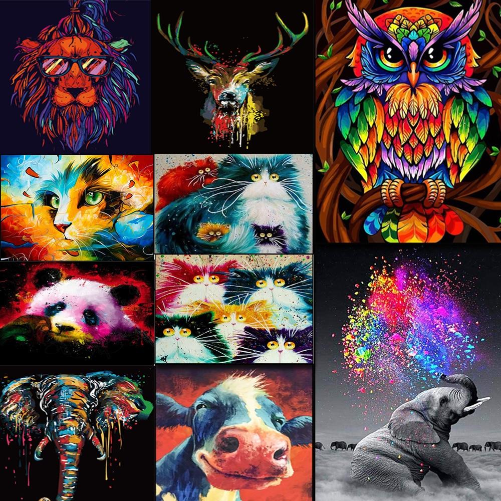 DIY картина рамка животные красочная Сова Diy картина по номерам набор Современная Настенная картина акриловая краска по номерам для подарка|Картина по номерам| | - AliExpress
