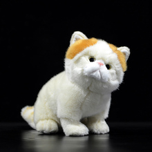 Cat Garfield Buy Cat Garfield With Free Shipping On Aliexpress Version