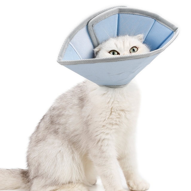 Pet Anti Scratching Neck Collar Velcro Cat Collar Protection 2
