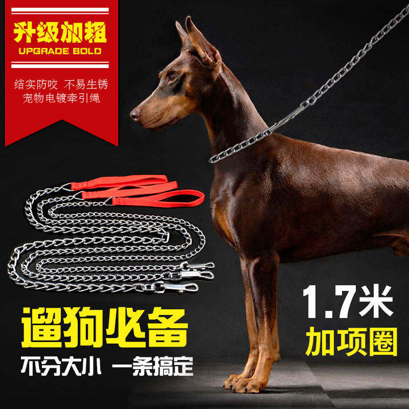 Pet Dog Hand Holding Rope Golden Retriever Teddy Dog Chain Neck Ring Iron Chain Small Medium Large Dog Dog Rope