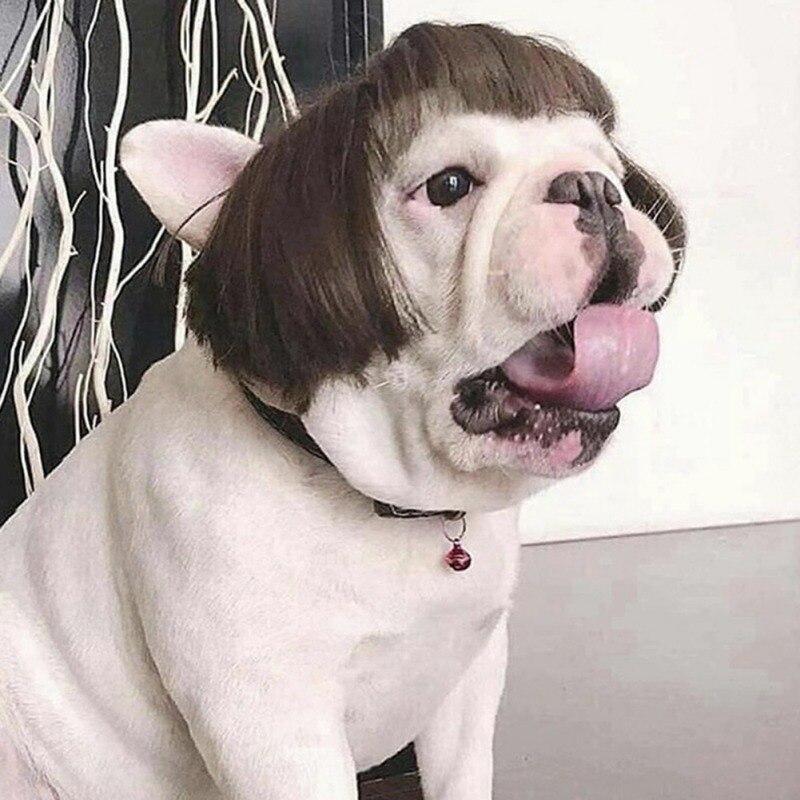 Забавная одежда для собаки кошки костюм накладные волосы парик Кепка собака костюмы для маленьких собак парики в рождественском стиле фоно...