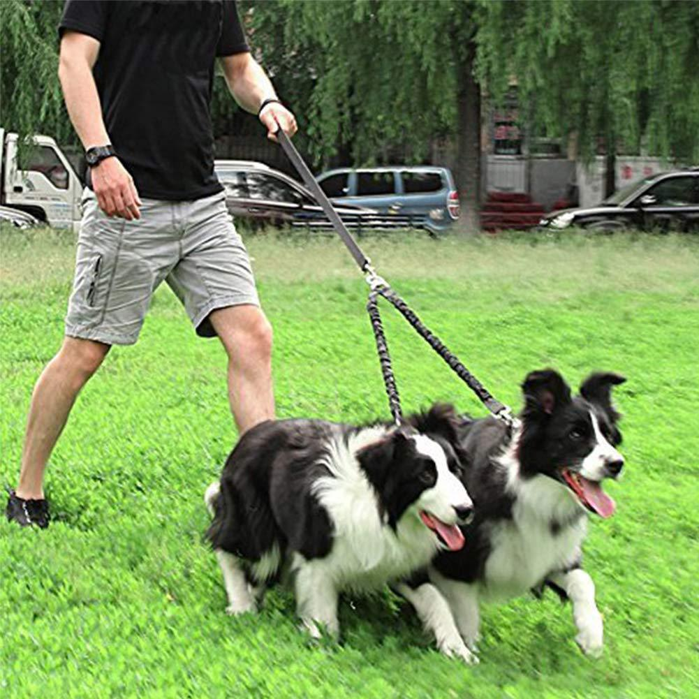 Dog Two Traction Rope Anti-Winding Double Headed Dog Rope Night Light Pet Supplies Hot Goods