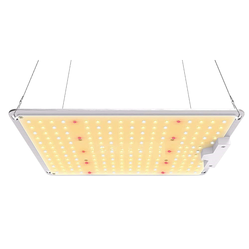 1000W LED Grow Light Lamp Full Spectrum LM301B Chips For Indoor Flowers Seedling Spider Farmer Driver Growing Lights With US Plu