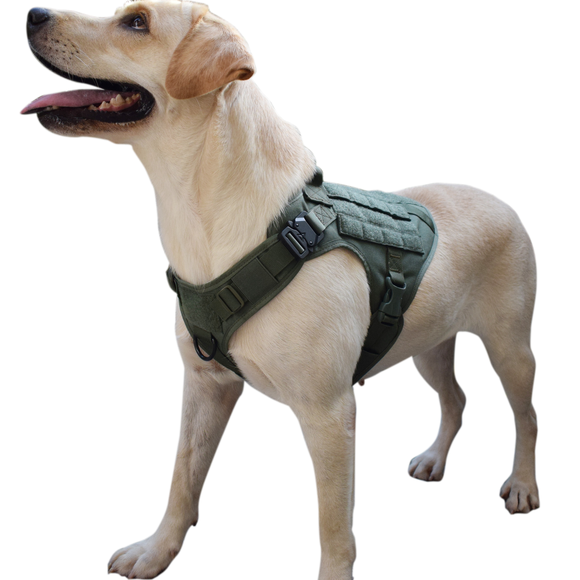 MXSLEUT Waterproof 1050D Nylon Molle System Tactical Dog Training Military Dog Harness Hunting dog Vest Police dog K9 Harness in Hunting Vests from Sports Entertainment