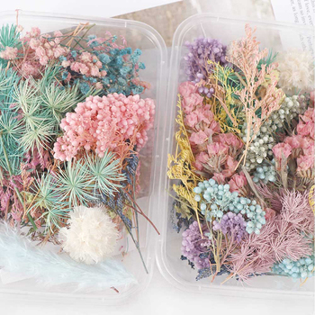 Смешанные красивые настоящие сушеные цветы натуральные цветы для художественного ремесла Скрапбукинг Смола ювелирное ремесло изготовление эпоксидной формы