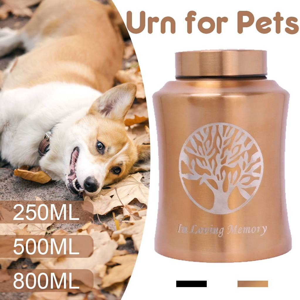 800/500/250ml Pet Memorial Urn For Dogs Cats Birds Cremation Ashes Ashes Holder Small Animals Mouse Rabbits Fish Funeral Casket