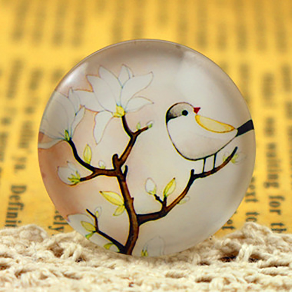 New Fashion  5pcs/Lot 25mm  Handmade Photo Glass Cabochons  (F4-10)