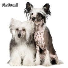 Diy 5d Diamond Painting Cross Stitch Animal Chinese Crested Dog Diamond Embroidery Mosaic Kits Handmade Hobbies And Crafts TT824(China)