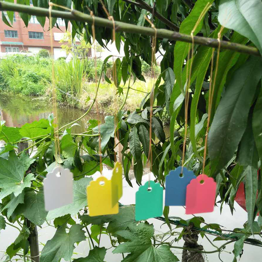 50PCS Eco Friendly Plant Labels Vegetables Bamboo Garden Markers T Type Farm