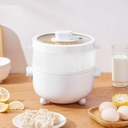 220V Electric Rice Cooker 2L Multi Cooker Mini Portable Electric Hot Pot Household Cooking Pot For Office School