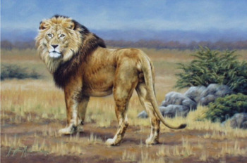 High Quality Animals Art Lion Oil Painting on Canvas