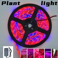 LED Streifen Anlage Wachsen lichter 1m 2m 3m Volle Spektrum Blume phyto lampe DC 5V Rot und Blau Licht Bar innen