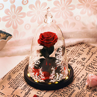 Ainyrose Beauty and The Beast Eternal Rose Red Artificial Flower In Glass Dome with LED Light for Valentine Mother's Day Gifts