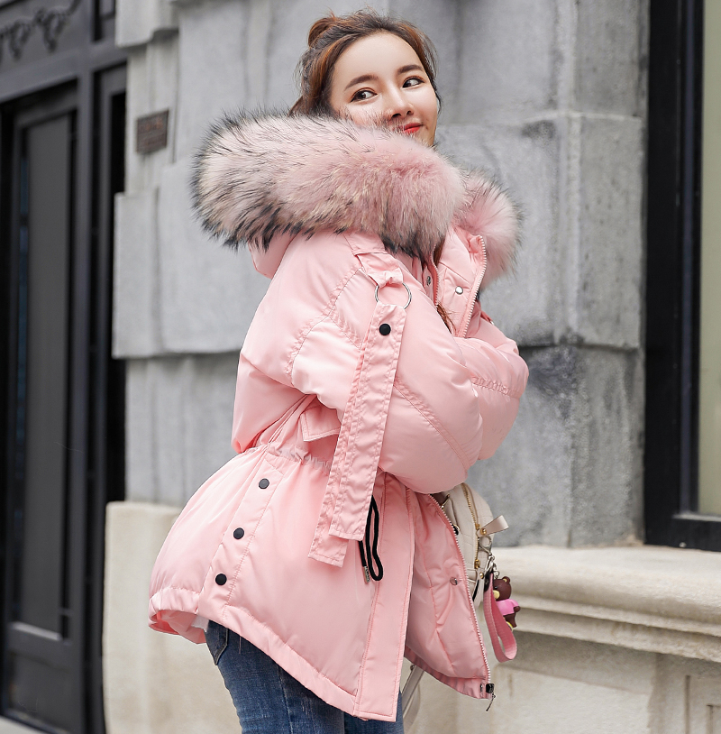 Korean Style 2019 Winter Jacket Women Cotton Padded Hooded With Fur Fe_C1_22