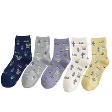 1 Pair Fashion Women Plant Cactus Pattern Cacti Socks Ball Harajuku Comfortable Lovely Girl Cotton Scok