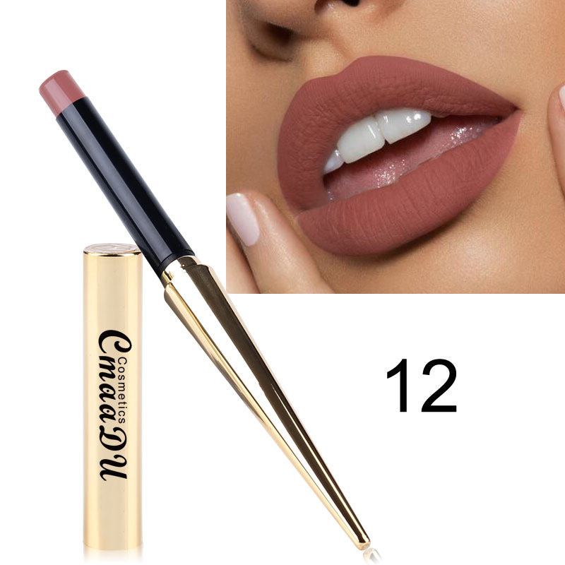 Hot Sales 12 Colors Matte Lipsticks Waterproof Long Lasting Lips Makeup Pigment Nude Sexy Red Lip Tint Matte Lipstick Cosmetic 6