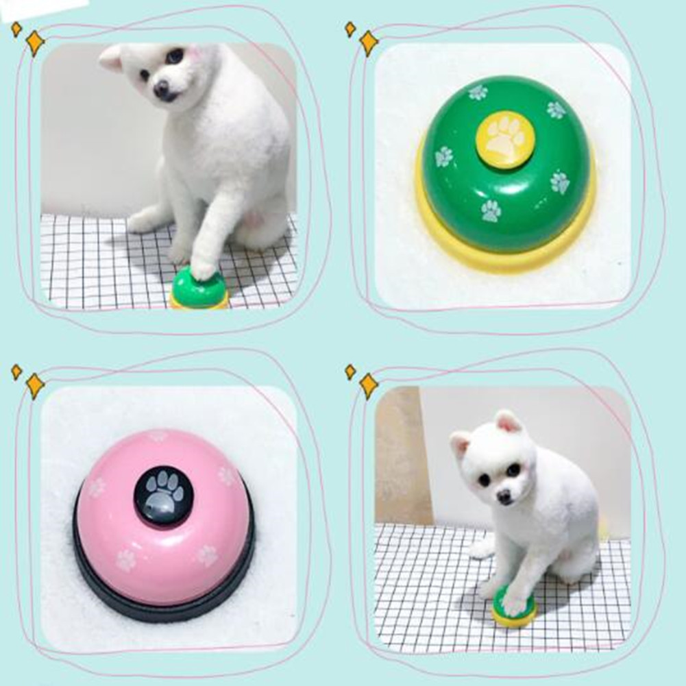 Interactive Pet Dog Cat Training Bell Toys Kitten Puppy Food Feed Reminder  Puzzle Toy Development Intelligence Squeak Sound Toy|Dog Toys| - AliExpress