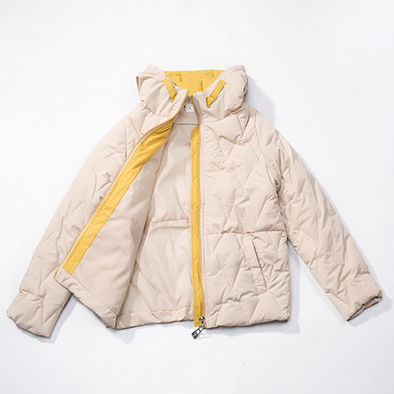 2019 Winter New Short Jacket Women Standing Collar Female Hooded Coat_A4_5