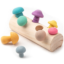 Wooden Rainbow Blocks Mushroom Picking Game Montessori Educational Wooden Baby Toys Developmental Shape Matching Assembly Grasp