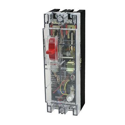 5000A Breaking Capacity 2 Poles Leakage Circuit Breaker AC 380V 100A