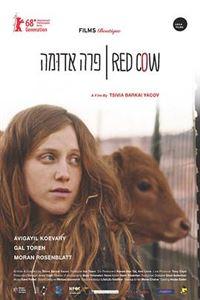 红牝[720p]