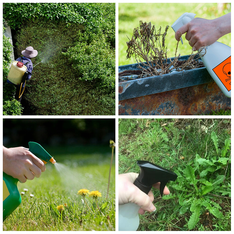 50g Ammonium Glyphosate Glycine Herbicide Remove Broadleaf Weed Kill Grass Pesticide Directional Stem And Leaf Spray Weedkiller
