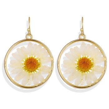 Geometric Shell Earrings For Women Earrings Jewelry Women Jewelry Metal Color: CS5295