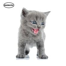 HotMeiNi 13cm x 8,7 cm 3D Auto Styling Aufkleber Aufkleber Zauberstab Kochen Art Zimmer Dekoration Tier Baby Katze Katzchen auto Aufkleber