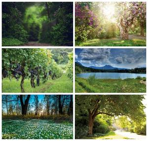 Image 1 - Laeacco Spring Natural Scenery Backgrounds Jungle Forest Wonderland Baby Child Portrait Photography Backdrops Newborn Photocall