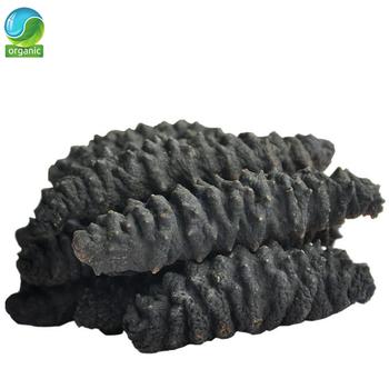Ogórek morski upiększa skórę wzmacnia mózg poprawia inteligencję i długowieczność Suszony morski ślimak morski-ogórek tanie i dobre opinie Jedna jednostka CN (pochodzenie)