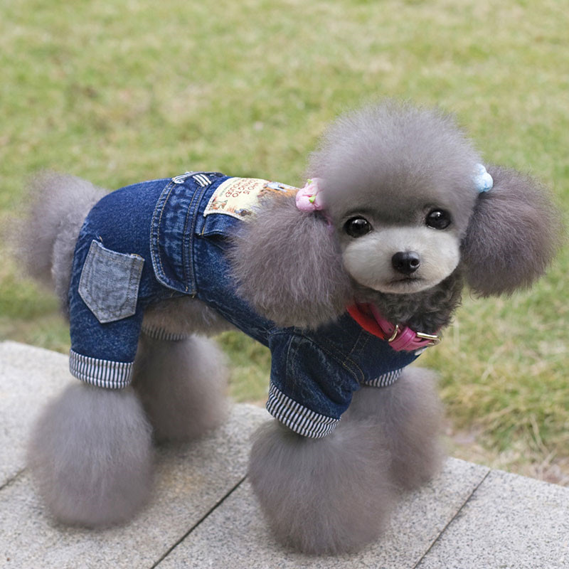 Pet-Dog-Jeans-Jumpsuit-Hooded-Coat-Pet-Autumn-Winter-Warm-Outfit-Printed-Perro-Overalls-For-Small (2)