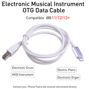 Image 2 - IOS13 Charge Cable For iPad MIDI USB OTG Type B Keyboard Adapter For IPhone 11 X XS MAX XR 8 7 6 Electric Piano Audio Connector