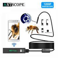 Caméra Endoscope WIFI Antscope HD 1200P Mini fil dur/souple sans fil 8mm 8LED Endoscope caméra pour Android PC IOS Endoscope
