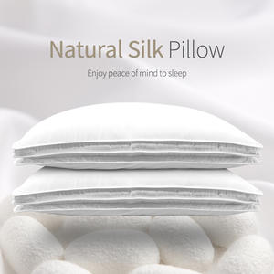 Chinese Natural 100% Silk 1.5kg/1.8kg/2.0kg Pillows Mulberry Pillow Hotel Memory Pillow for Health Sleeping cotton pillow case