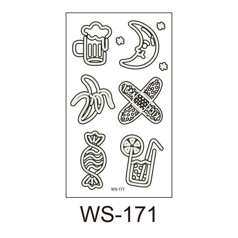 WS-171