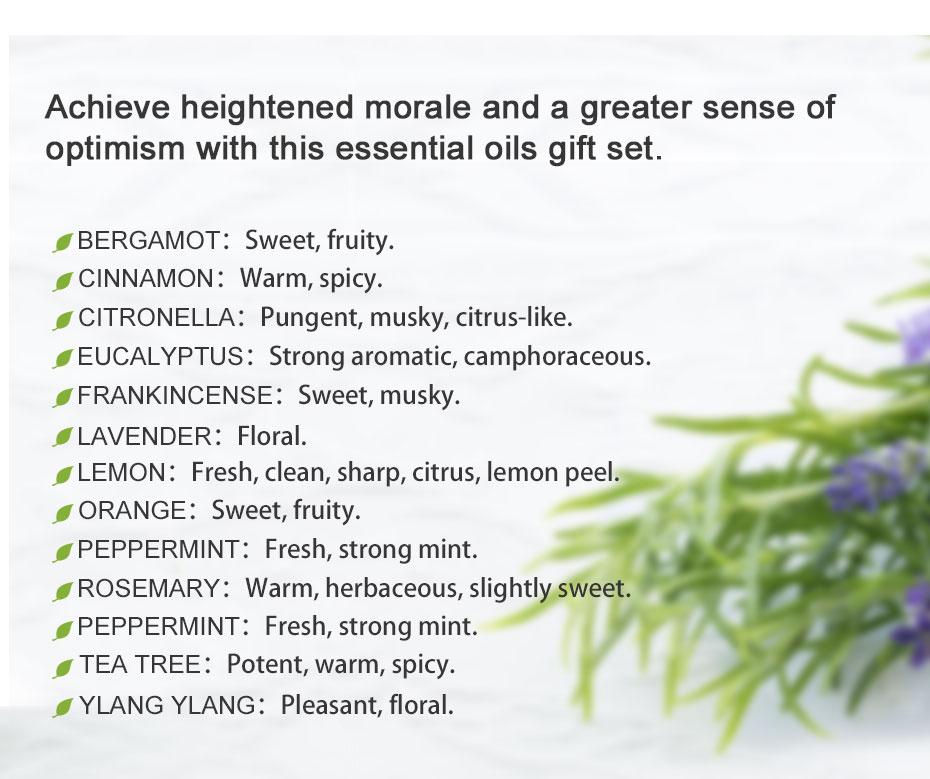 Lagunamoon Pure Essential Oils 150ML*2pcs Set Humidifier Diffuser Aromatherapy Aroma Massage Tea Tree Lavender Oil