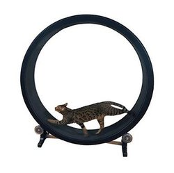 Pet cat climbing frame, cat toy, cat sports toy, cat climbing wheel, cat treadmill, cat running wheel