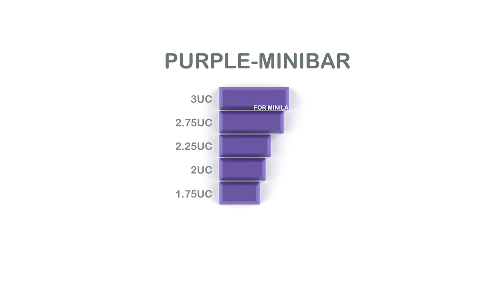 012-CYBERPUNK PUMPER Spacebar Purple Minibar