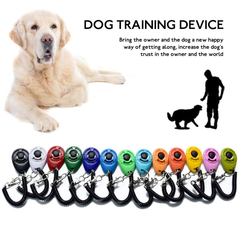 1 Piece Pet Cat Dog Training Clicker Plastic New Dogs Click Trainer Aid Too Adjustable Wrist Strap Sound Key Chain Dog Supplies 3
