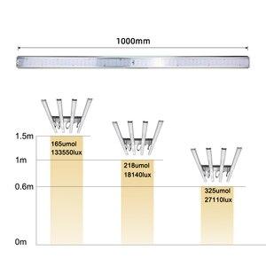 Image 5 - Lượng Tử Đèn LED Phát Triển Đèn Ban Samsung LM301B Suốt 300W 1200W 1800W Vật Có Hoa Lớn Đèn Trong Nhà thực Vật Nhà Kính Lều