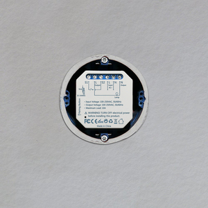 Image 2 - Interrupteur intelligent avec minuterie, contrôlable à distance par application via wi fi, Google Home et Alexa, Module dautomatisation, 10A