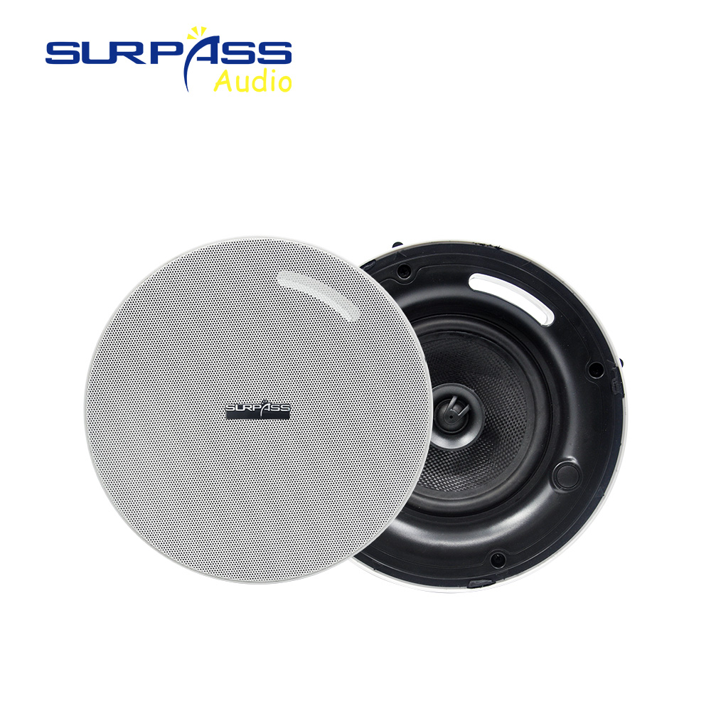 Big Power Coxial Ceiling Column Loadspeaker Background Music BGM System 8Ohm RMS 40watts Bass Tweeter Speaker Horn