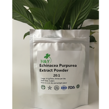 цена на 150-1000g Free Shipping Top Quality Echinacea Purpurea Extract /Ehinacea Extract Powder 20:1 In Stock