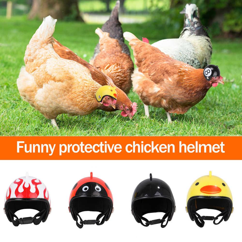Casco de pollo para mascotas pequeñas, Protector de cabeza de pájaro, pato, codorniz