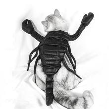 Костюм для косплея кошки на Хэллоуин костюм скорпиона забавный