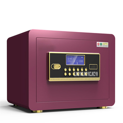 Strongbox Digitale Veiligheid Veilig BGX-25 Wachtwoord Anti-diefstal Vingerafdruk Onzichtbare Wachtwoord Kantoor Sieraden Met Lock Alarm Kast