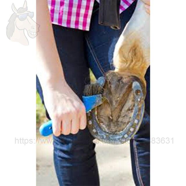 Soft Grip Hoof Pick with Brush 17.7x8.5cm Equestrian Grooming Kit 3